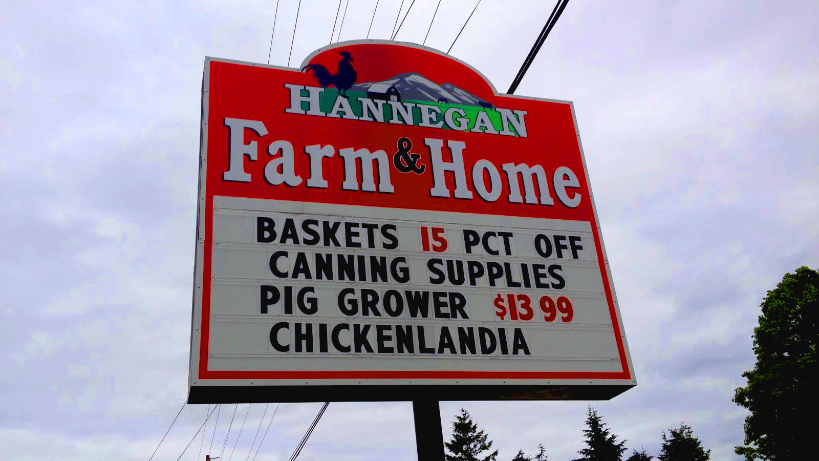 Welcome to Chickenlandia