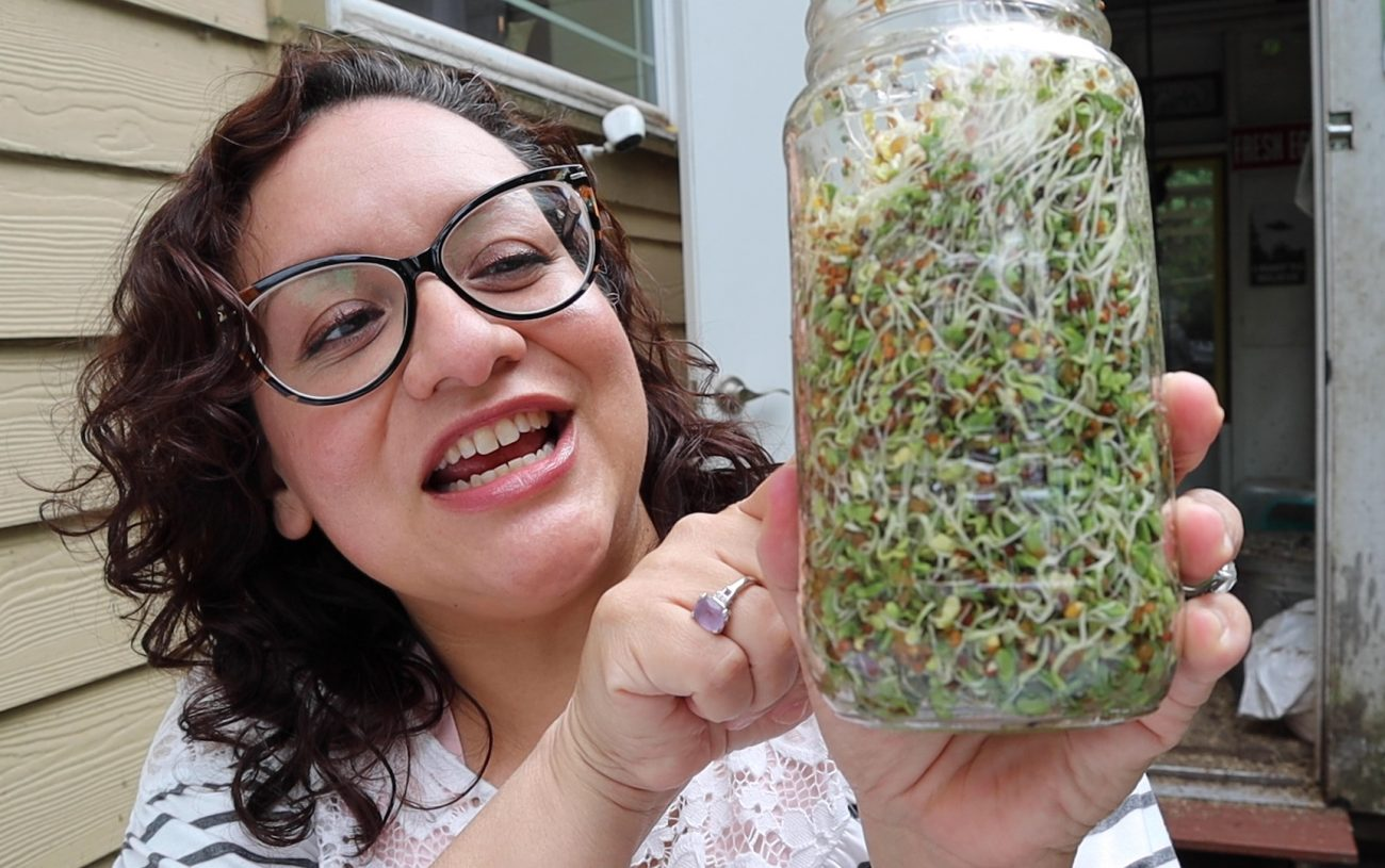 How to Sprout Grains and Seeds for Chickens!