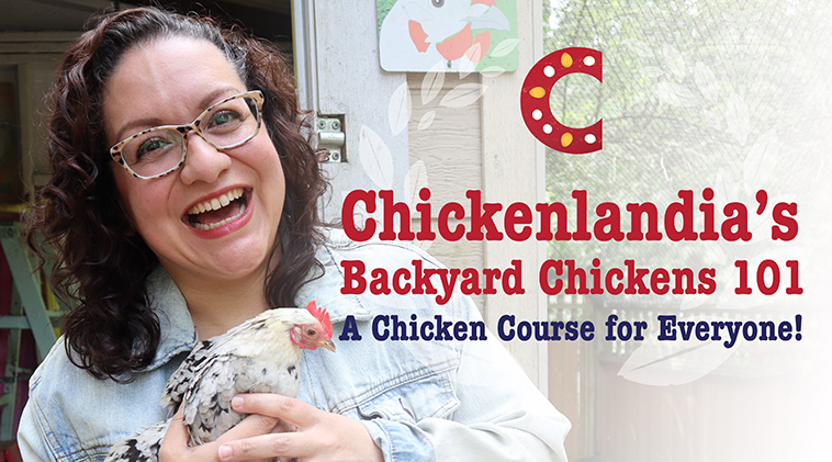 Announcing an easy-to-use Backyard Chickens Course for Everyone!